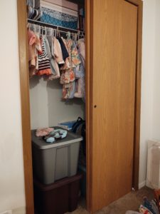 closet with hanging clothes and storage bins